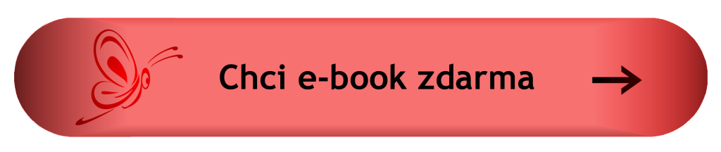 žsž práce-e-book zdarma_1