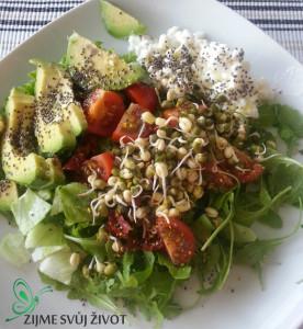 žsž- chia a salát